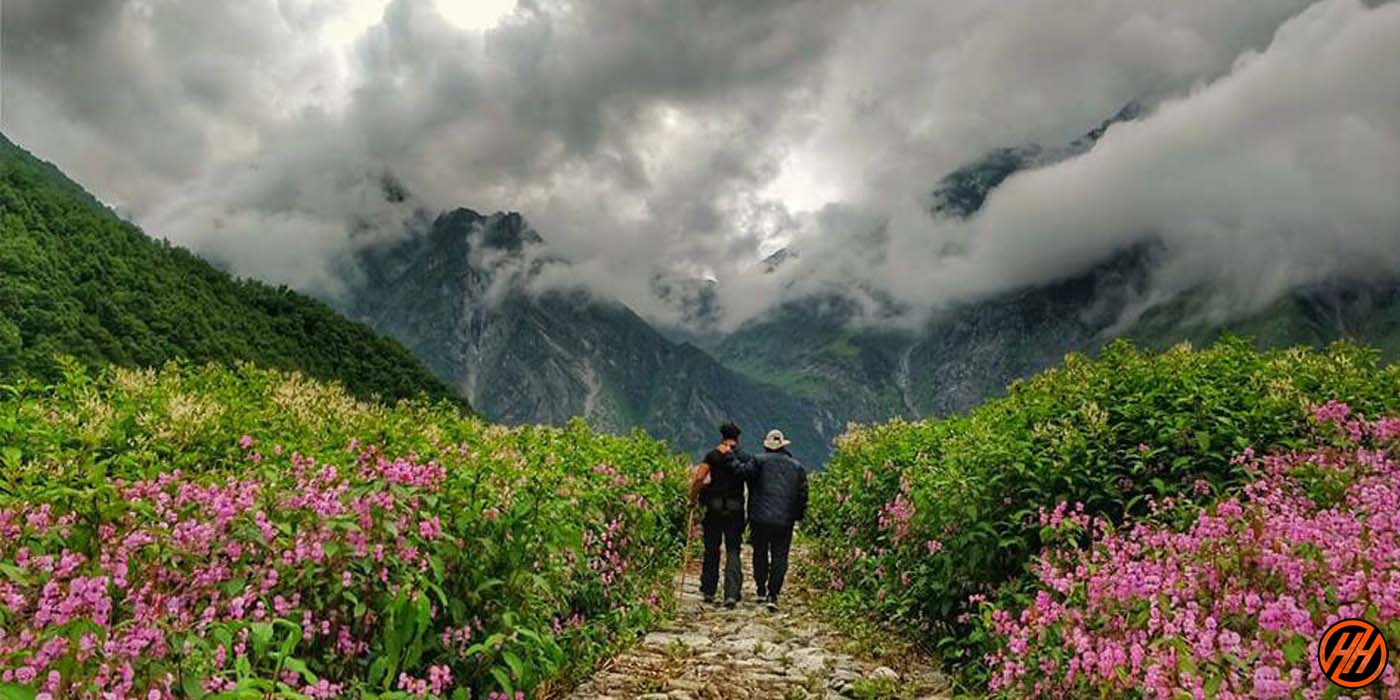 In the West Himalayan, Uttarakhand: The Nation Park Of Flowers