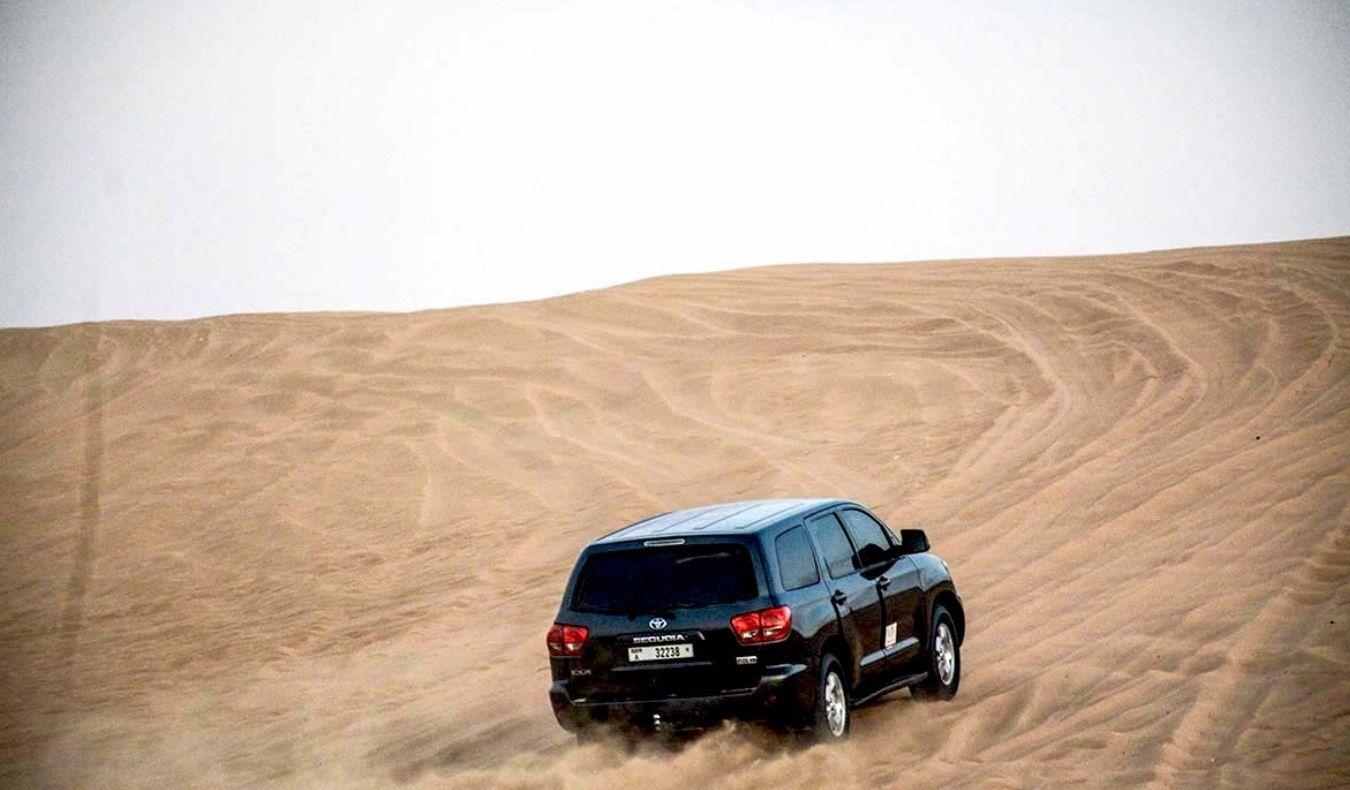 How Desert Safari Dubai Looks Like